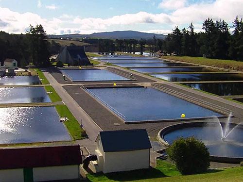 WATER & WASTE WATER MANAGEMENT